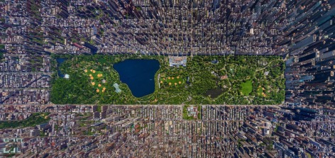 A new persective: Central Park, Manhattan